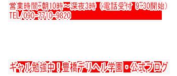 豊橋デリヘル学園 東三河  豊川 風俗